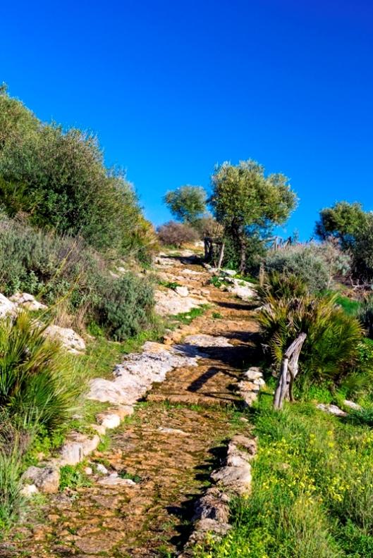 Valle dei Tempi ad Agrigento