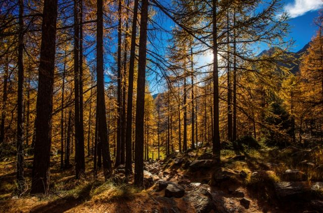 Autunno - Aosta - Movingitalia.it