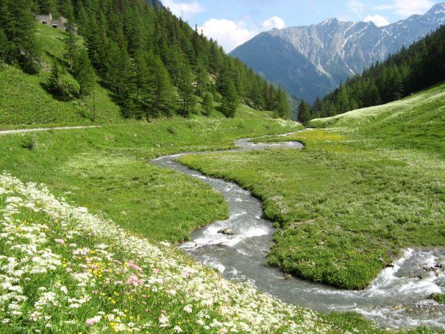 Fiumiciattolo nelle Alpi - Aosta - Movingitalia.it