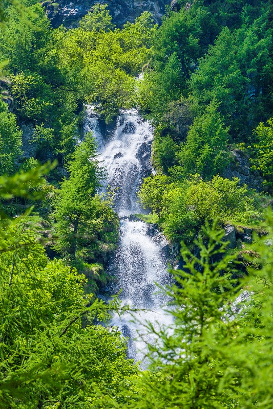 Cascata nella foresta vicino a Gressoney La Trinité - Movingitalia.it