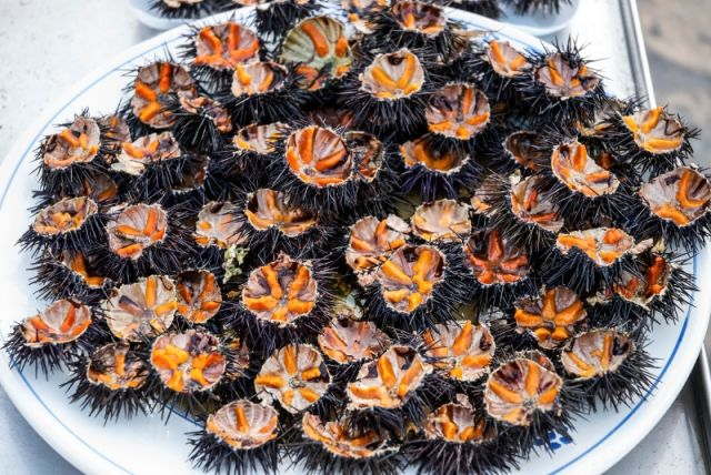 Piatto tipico pugliese ricci di mare a Bari