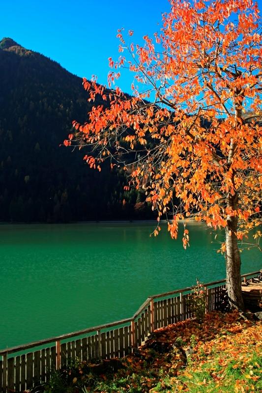 Immagini laghi a alleghe for Disegni di laghi