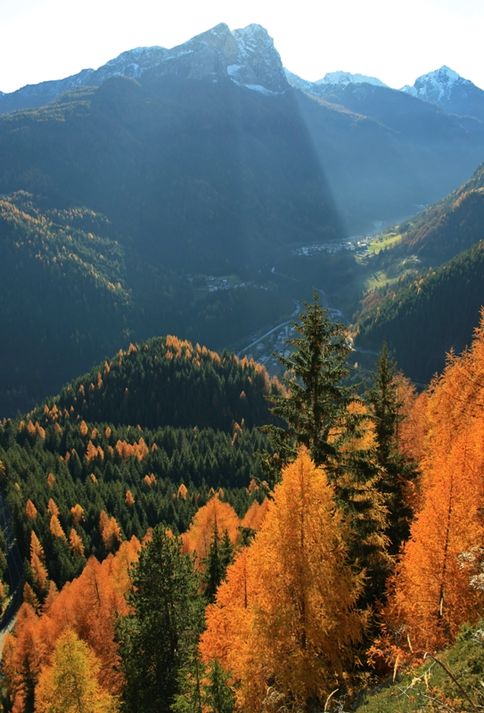 Foresta autunnale a Rocca Pietore - Movingitalia.it