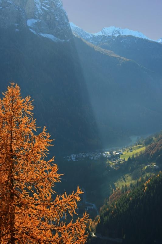 Luce e alberi a Rocca Pietore - Movingitalia.it