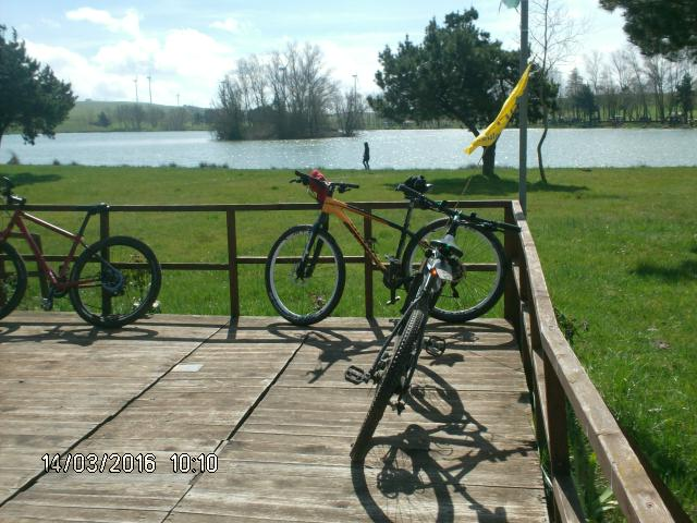 Uscita in MtB sul lago - Movingitalia.it