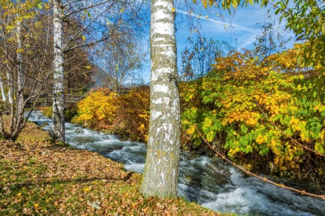 Torrente in Trentino Alto Adige - Movingitalia.it