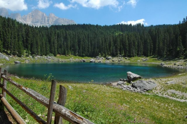 Prato e lago di Carezza a Bolzano - Movingitalia.it