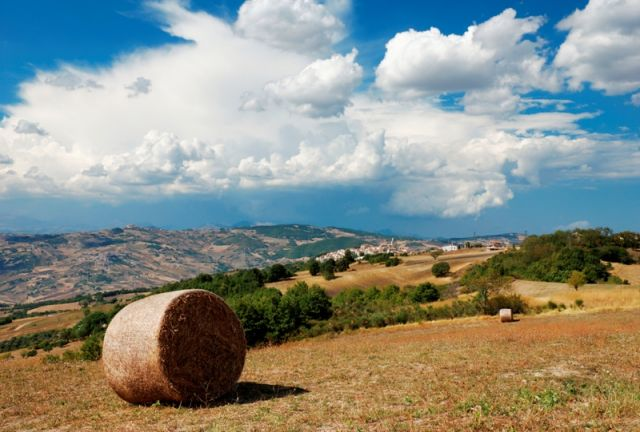 Colline a Montagano - Movingitalia.it