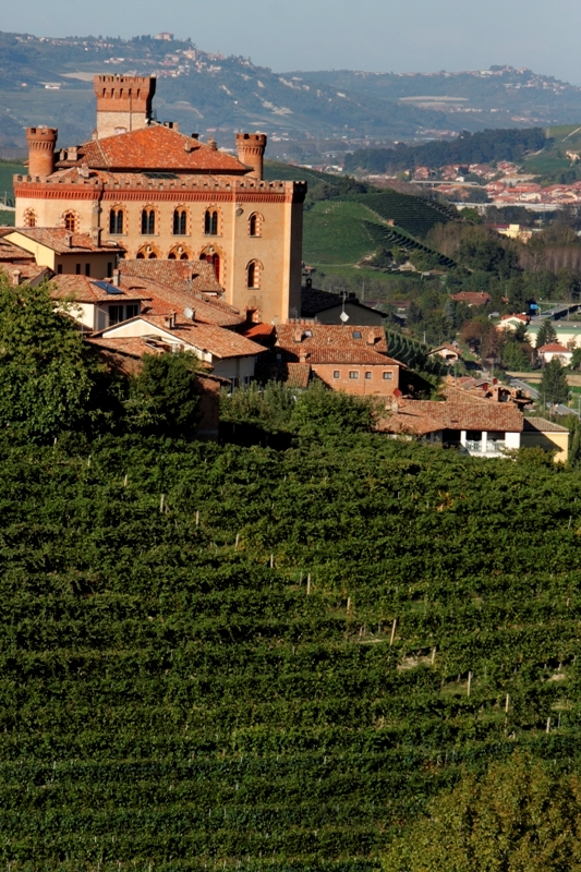 Vedute del Castello di Barolo nelle Langhe - Movingitalia.it