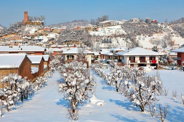 Alberi e case sulla collina a piccola cittadina di Corneliano D'Alba in inverno in Piemonte - Movingitalia.it