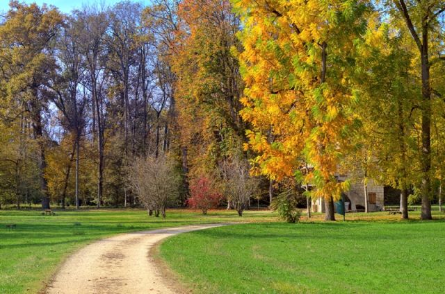 Parco autunnale - Racconigi - Movingitalia.it