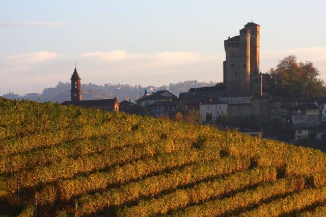 paesaggio vigneto con Serralunga d'Alba nelle Langhe in Piemonte - Movingitalia.it