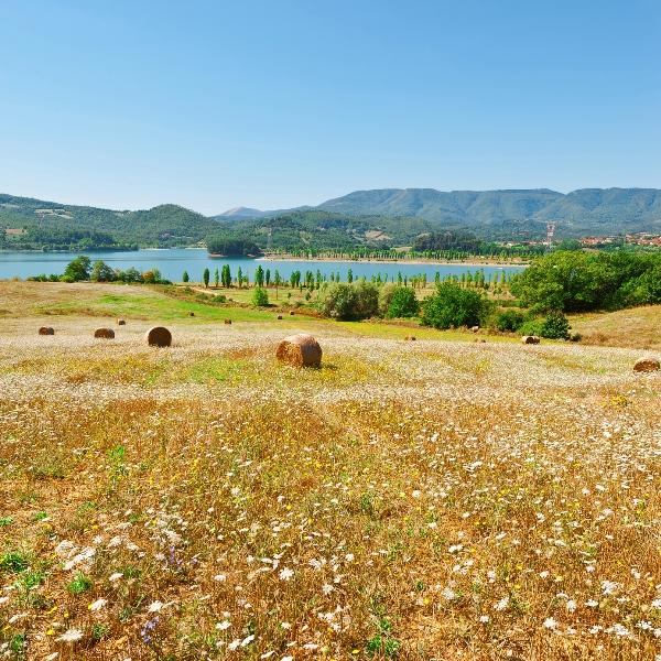 Lago Bilancino e paesaggio a Firenze