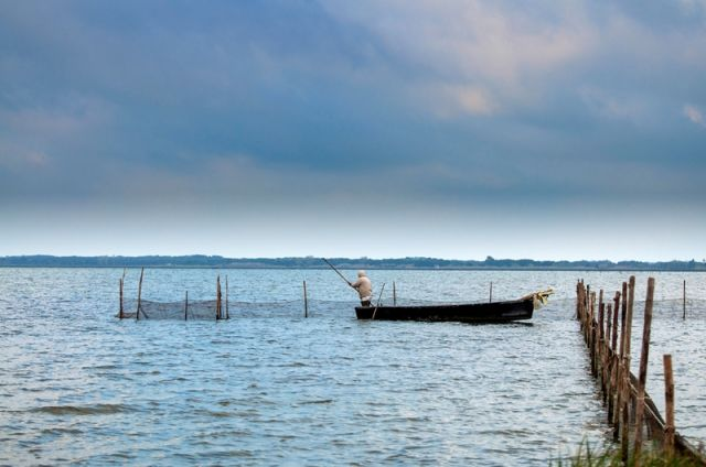Pescatore nel Lago di Lesina - Movingitalia.it