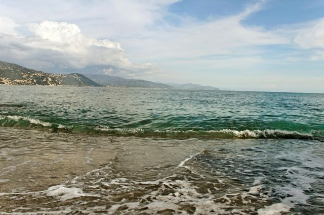 Spiaggia e mediterraneo a Santa Margherita in Liguria - Movingitalia.it