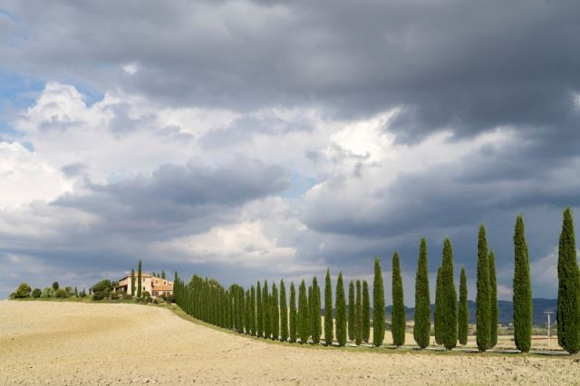 Foto panoramica e cielo in Toscana in Val d'Orcia - Movingitalia.it