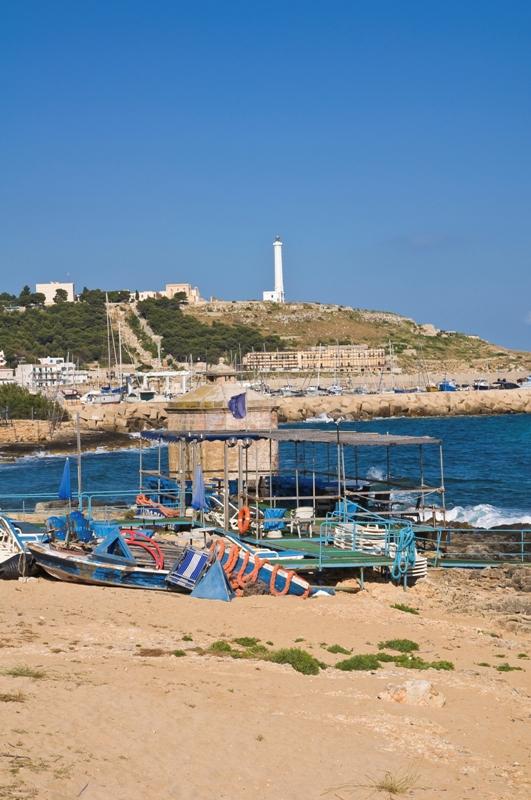 Foto panoramica della città di Santa Maria di Leuca e faro sullo sfondo in Puglia - Movingitalia.it