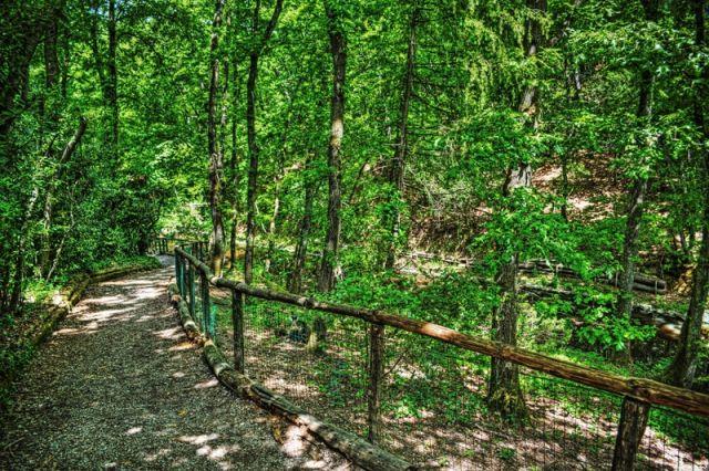 Escursioni e passeggiate a Livorno