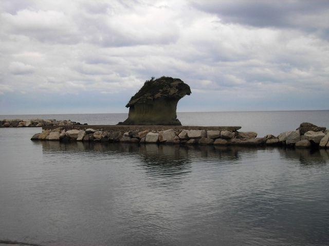 fungo di Ischia a Casamicciola - Movingitalia.it