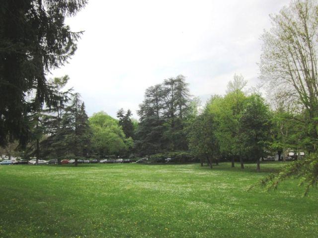piante nel parco Mazzini Salsomaggiore Terme - Movingitalia.it