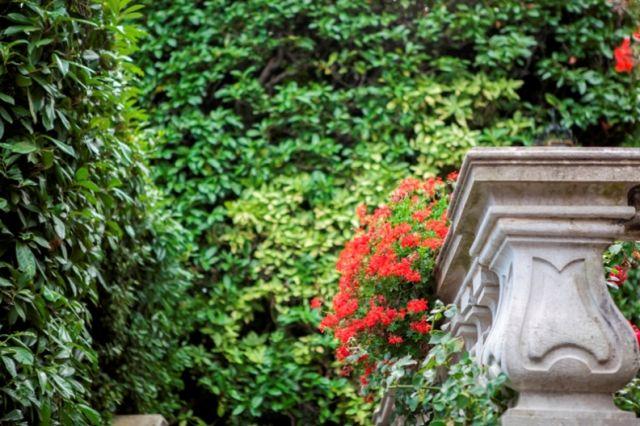 Primo piano della villa carlotta a Pavia in Lombardia - Movingitalia.it