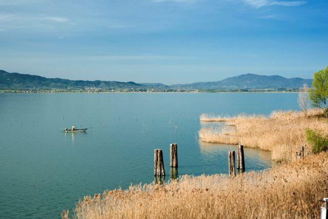 Lago Transimeno