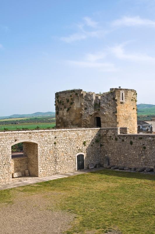 Foto panoramica del Castello di Venosa