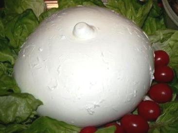 Mozzarella zizzona d.o.p.