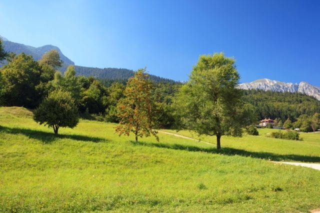 panoramica verde ad Andalo - Movingitalia.it
