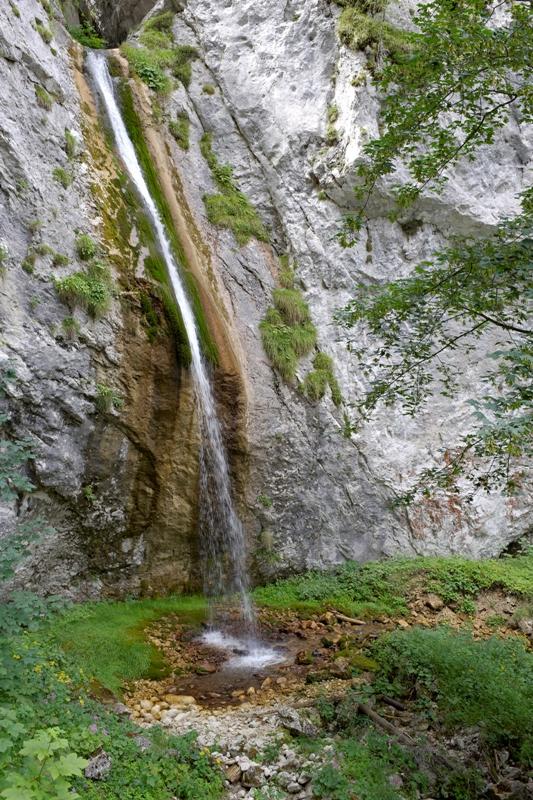 Una piccola cascata da Noana torrente Val Noana. Provincia di Trento - Movingitalia.it