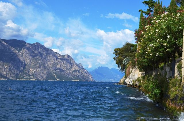 Oleandri sul Garda - Movingitalia.it